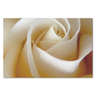Foto color de rosa poner crema del boda papel de seda