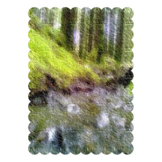 Foto corregida del bosque