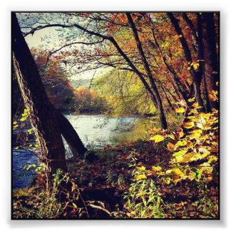 Foto Corriente del otoño