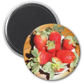 Foto de la fruta en los imanes imán redondo 5 cm