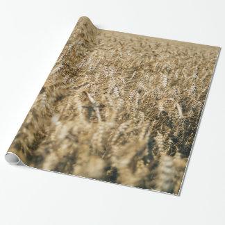 Foto de la granja del primer del campo de trigo papel de regalo