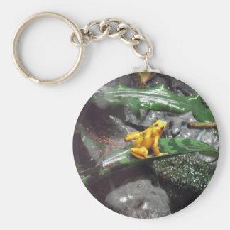 Foto de la rana del dardo del veneno llavero personalizado