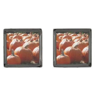 Foto de las calabazas para la caída, Halloween o Gemelos Metalizados