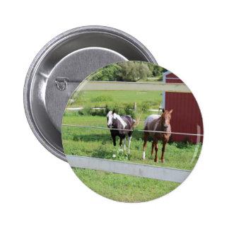 Foto de los caballos chapa redonda de 5 cm