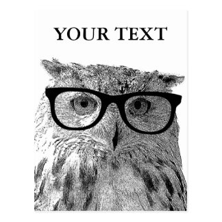 Foto de los vidrios del búho animal divertido de postal