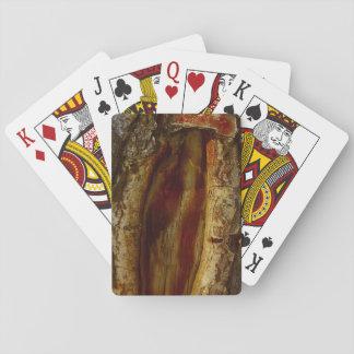 Foto de un hueco en un árbol barajas de cartas