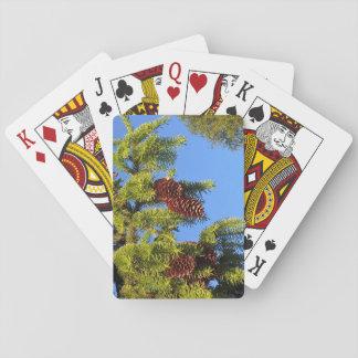 Foto del bosque de la naturaleza con las ramas barajas de cartas