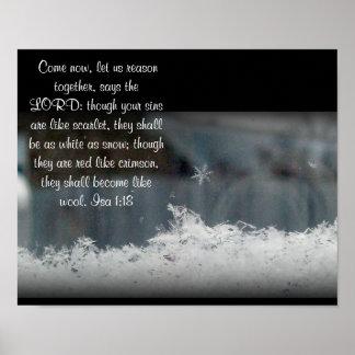 Foto del copo de nieve del ~ del 1:8 del AIA Póster