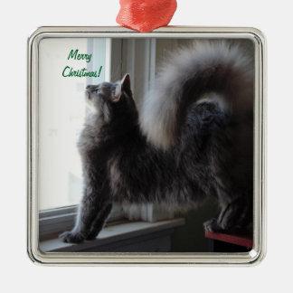 Foto del gato de Coon de Maine Adorno Navideño Cuadrado De Metal