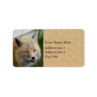 Foto divertida del Fox Etiquetas De Dirección