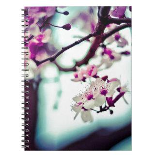 Foto en colores pastel de la flor de cerezo cuaderno