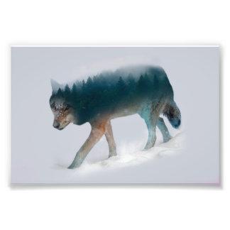 Foto Exposición doble del lobo - bosque del lobo - lobo