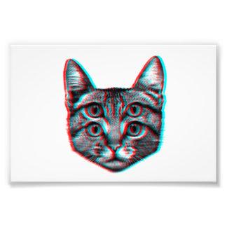 Foto Gato 3d, 3d gato, gato blanco y negro