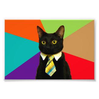 Foto gato del negocio - gato negro