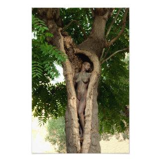 Foto Heart of Tree the by Johannes Stötter