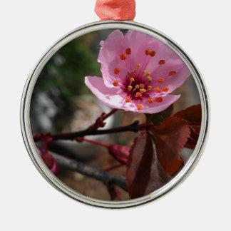Foto hermosa de la flor de cerezo adorno redondo plateado
