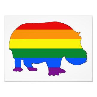 Foto Hippopotamus del arco iris