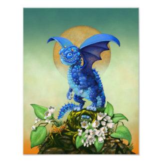 Foto Impresión del dragón 11x14 del arándano