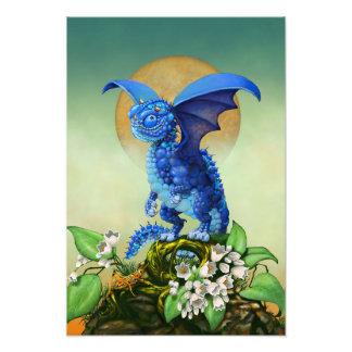 Foto Impresión del dragón 13x19 del arándano