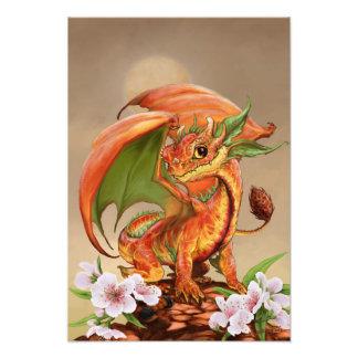 Foto Impresión del dragón 13x19 del melocotón
