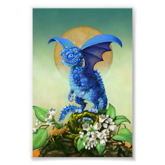 Foto Impresión del dragón 4x6 del arándano