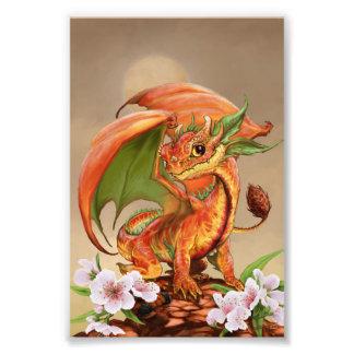Foto Impresión del dragón 4x6 del melocotón