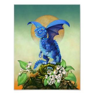 Foto Impresión del dragón 8.5x11 del arándano