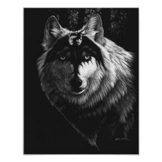 Foto Impresión del lobo 11x14 del dragón