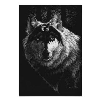 Foto Impresión del lobo 13x19 del dragón