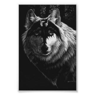 Foto Impresión del lobo 4x6 del dragón