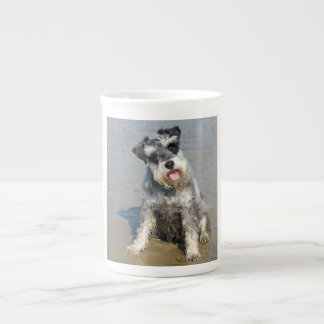 Foto linda del perro miniatura del Schnauzer en la Taza De Té
