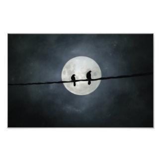 Foto Lit de los cuervos por la luna Slivery
