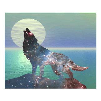 Foto Lobo de la estrella