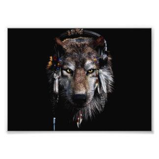 Foto Lobo indio - lobo gris