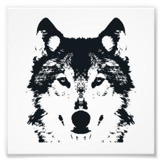 Foto Lobo negro del ilustracion