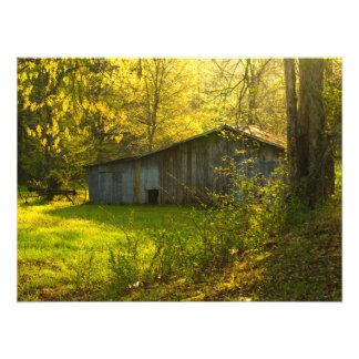 Foto Luz rural de la mañana de la primavera de