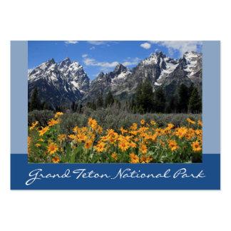 Foto magnífica del recuerdo de la primavera de tarjetas de visita grandes