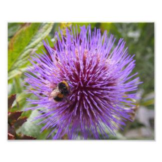 Foto Manosee la abeja en una flor del cardo