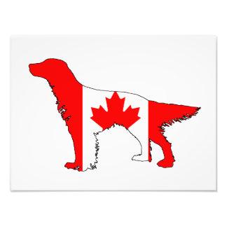 Foto Organismo de la bandera de Canadá