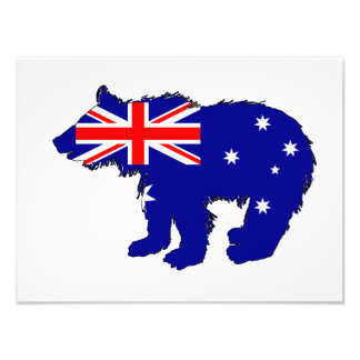 "Foto Oso Cub ""Australia """
