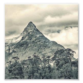 Foto Paisaje del bosque de la Patagonia, Aysen, Chile