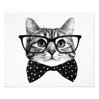 Foto pajarita del gato - gato de los vidrios - gato de