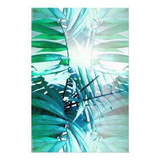 Foto Palma tropical
