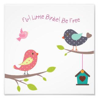 Foto Pequeño poster del pájaro para las niñas y los