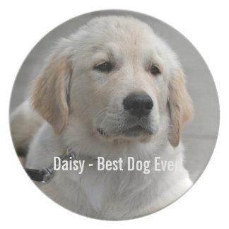 Foto personalizada y nombre del perro del golden platos