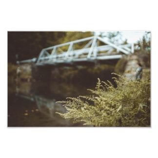 Foto Pesca debajo del puente