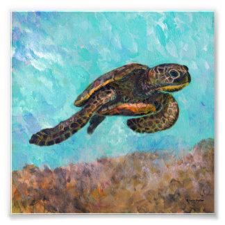 Foto Pintura de la tortuga de mar