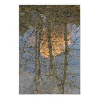 Foto Reflexión de los árboles del invierno