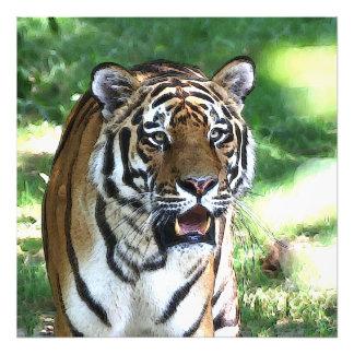 Foto Tigre 5 del carro