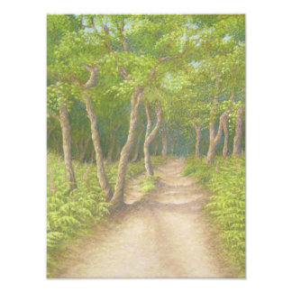 Foto Trayectoria a través de árboles, impresión